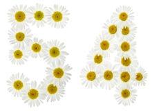 Numero arabo 54, cinquantaquattro, dai fiori bianchi della camomilla, Fotografie Stock Libere da Diritti
