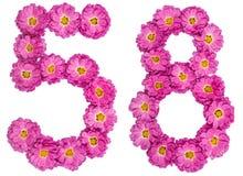 Numero arabo 58, cinquantotto, dai fiori del crisantemo, i Fotografia Stock Libera da Diritti