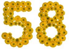 Numero arabo 58, cinquantotto, dai fiori gialli del ranuncolo Fotografia Stock Libera da Diritti