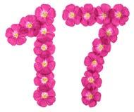 Numero arabo 17, diciassette, dai fiori rosa di lino, isolati su fondo bianco immagine stock