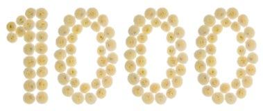 Numero arabo 1000, mille, dai fiori crema di chrysan Fotografie Stock Libere da Diritti