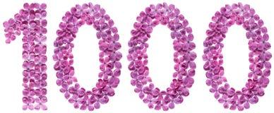 Numero arabo 1000, mille, dai fiori del lillà, isolat Fotografie Stock