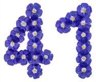 Numero arabo 41, quaranta uno, dai fiori blu di lino, isolato Fotografia Stock Libera da Diritti