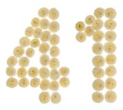 Numero arabo 41, quaranta uno, dai fiori crema del chrysanthemu Fotografie Stock Libere da Diritti