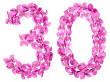 Numero arabo 30, trenta, dai fiori della viola, isolati su wh fotografia stock
