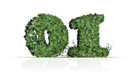 Numero 01 dalle foglie verdi dell'edera Immagini Stock