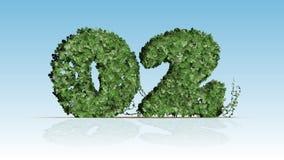 Numero 02 dalle foglie verdi dell'edera Fotografia Stock Libera da Diritti