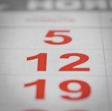 Numero del calendario dodici Immagine Stock