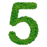 Numero 5 dell'erba Immagini Stock Libere da Diritti