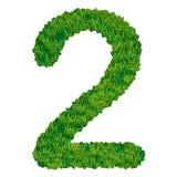 Numero 2 dell'erba Fotografia Stock Libera da Diritti