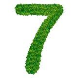 Numero 7 dell'erba Fotografie Stock Libere da Diritti