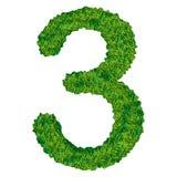 Numero 3 dell'erba Immagine Stock Libera da Diritti