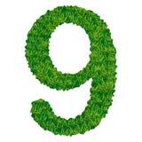Numero 9 dell'erba Immagini Stock