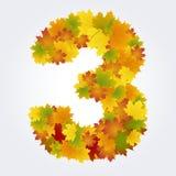 Numero 3 delle foglie di autunno Immagine Stock