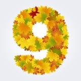 Numero 9 delle foglie di autunno Immagini Stock Libere da Diritti