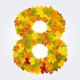 Numero 8 delle foglie di autunno Fotografia Stock