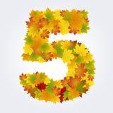 Numero 5 delle foglie di autunno Fotografia Stock Libera da Diritti