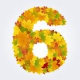Numero 6 delle foglie di autunno Fotografie Stock