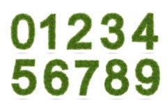 Numero di alfabeto dell'erba verde isolato su bianco con il percorso di ritaglio Immagini Stock Libere da Diritti