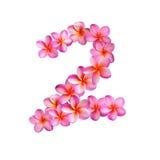 Numero due rosa dei fiori di plumeria Immagini Stock