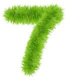 Numero fatto di erba - 7 sette Fotografie Stock Libere da Diritti