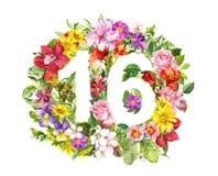 Numero floreale 16 sedici dai fiori e dalla fienarola dei prati di estate r royalty illustrazione gratis