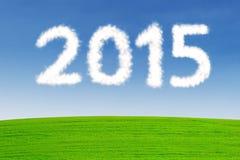 Numero a forma di 2015 della nuvola Immagini Stock