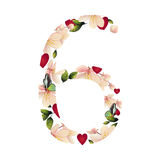 Numero sei con i fiori Fotografie Stock Libere da Diritti
