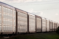 Numerous Auto Rail Cars Glinting in Sunset Light. Several metal railway goods cars shining in sunset light Royalty Free Stock Photography