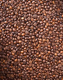 Numerous coffee beans Stock Image