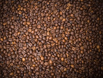 Numerous coffee beans Royalty Free Stock Image