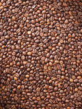 Numerous coffee beans Royalty Free Stock Photo