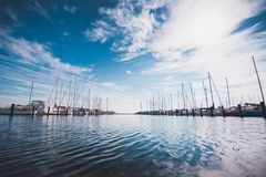 Numerous yachts in Port of Copenhagen Denmark Stock Photography