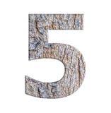 Numerowy list od korowatego drzewa odizolowywającego na białym tle Zdjęcie Royalty Free