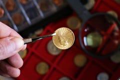 Numismatisch op het werk toont sommige gouden muntstukken royalty-vrije stock afbeeldingen