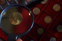 Numismatiskt p? arbete visar n?gra guld- mynt royaltyfri bild