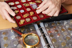 Numismatist with his collection of coins. Close-up Royalty Free Stock Image