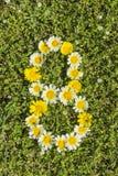 Nummer acht van bloemaantallen Stock Foto's