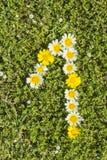 Nummer ett från blommanummer Arkivbild
