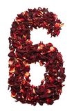 Nummer 6 från torkade blommor av hibiskuste på en vit bakgrund Nummer för baner, annonseringar Royaltyfri Bild