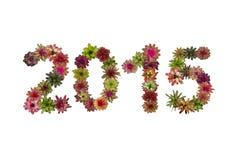 Nummer 2015 gemaakt van bromeliabloem Royalty-vrije Stock Afbeeldingen