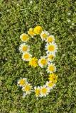 Nummer negen van bloemaantallen Stock Afbeelding