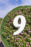 Nummer 9 op bloemachtergrond Stock Foto