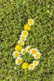 Nummer sex från blommanummer Royaltyfri Bild
