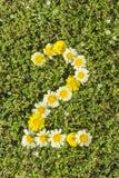 Nummer två från blommanummer Royaltyfri Bild
