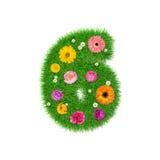 Nummer 6 van gras en kleurrijke bloemen, de lenteconcept voor grafische ontwerpcollage die wordt gemaakt Stock Afbeelding