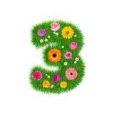 Nummer 3 van gras en kleurrijke bloemen, de lenteconcept voor grafische ontwerpcollage die wordt gemaakt Royalty-vrije Stock Fotografie