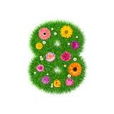 Nummer 8 van gras en kleurrijke bloemen wordt gemaakt die Royalty-vrije Stock Foto's