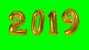 Nummerieren Sie den 2019-guten Rutsch ins Neue Jahr-Geburtstagsjahrestagsfeier-Goldballon, der auf grünen Schirmhintergrund schwi stock video footage