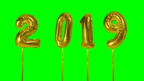Nummerieren Sie 2019-guten Rutsch ins Neue Jahr-Geburtstagsjahrestagsfeier den goldenen Ballon, der auf grünen Schirmhintergrund  stock video footage